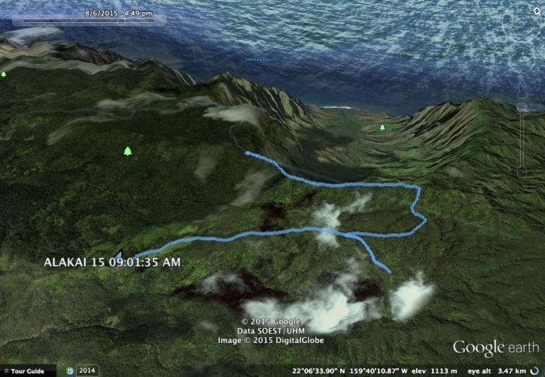 Alakai google earth track