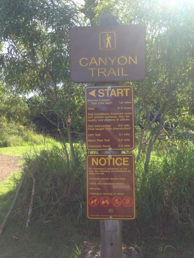 Trail info before you start