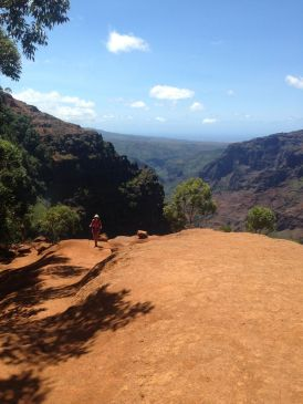 View south over Waimea Canyon