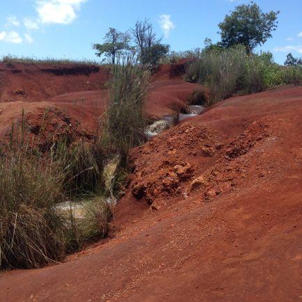 A side creek on our drive back down towards Waimea