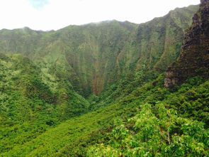 Hanakoa Valley