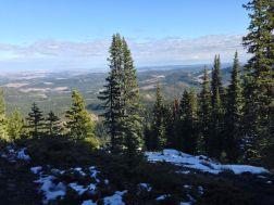NE view towards Sibbald