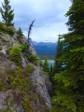 Views east