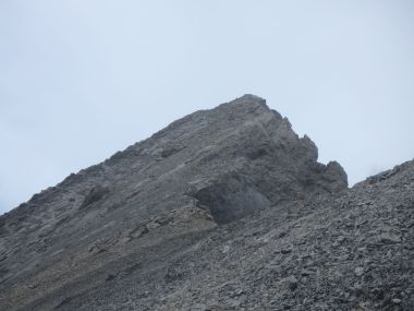A close up of Mist Mountain Summit