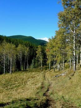 Gorge Creek trail - access to Volcano Ridge Trail
