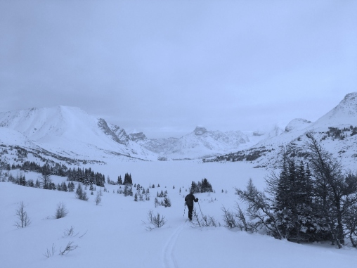 Skiing down Boulder Pass towards the snowcovered Ptarmigan Lake