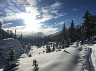 Everything I love about winter