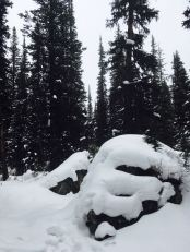 Snow covered boulders