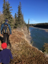 Walking along the north bank of the Bow river after departing the Kananaskis Dam