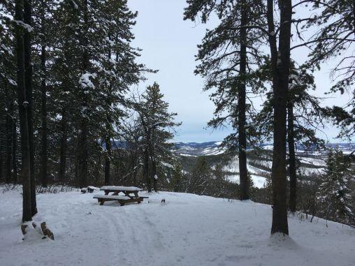 The top of Pine Ridge