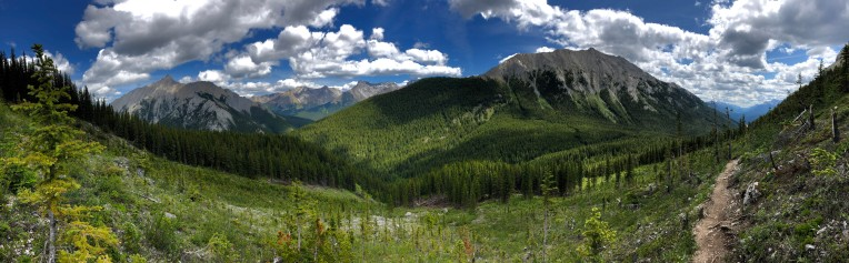 View from the avalanche paths descending from Mt. Edith